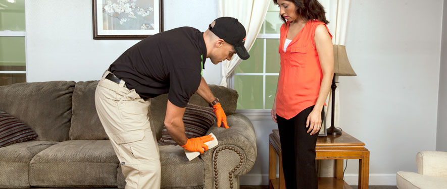 Asheville, NC carpet upholstery cleaning